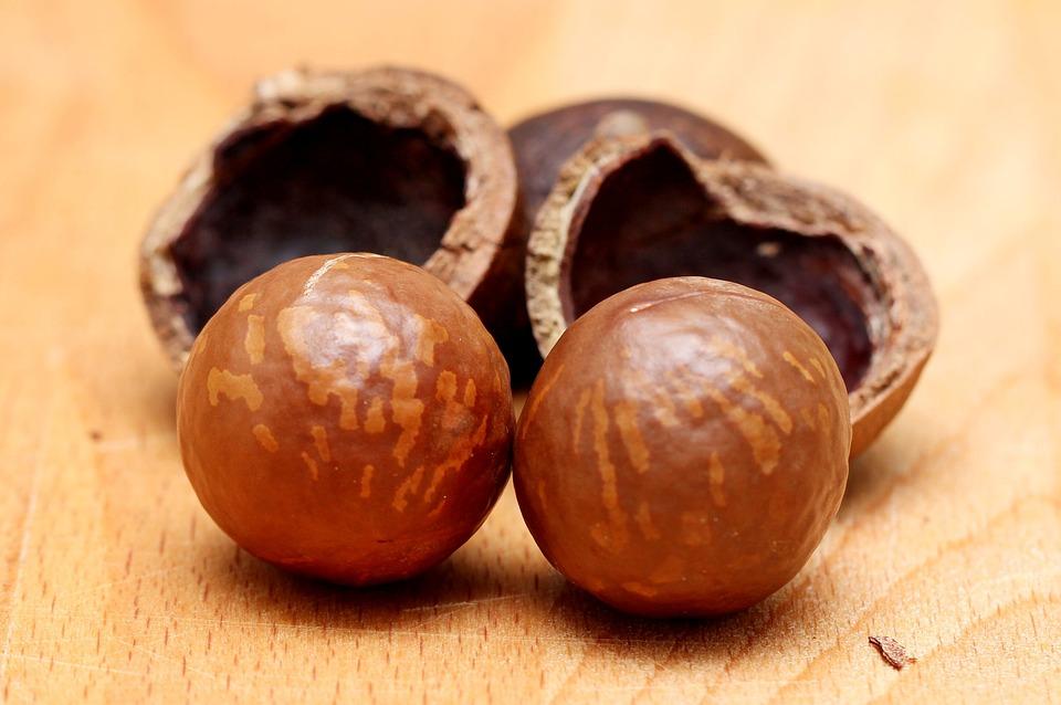 dva makadamové ořechy
