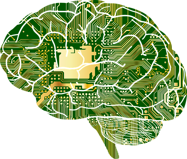 mozek a myšlení