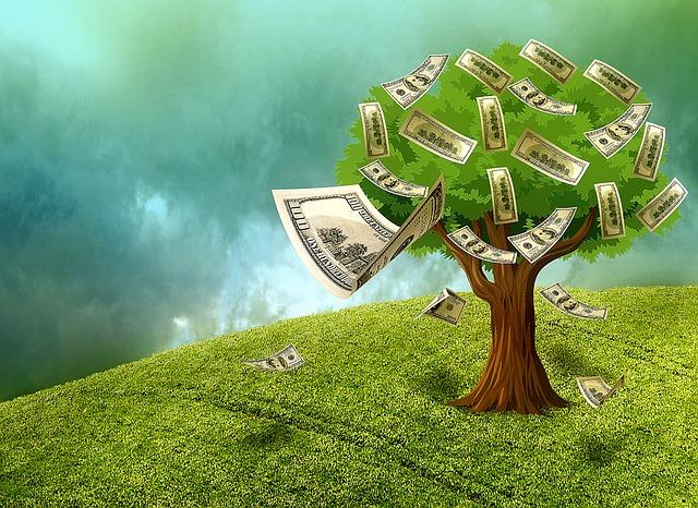 bankovky na stromě.jpg